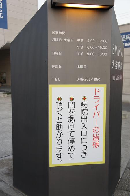 20111210dblog.JPG