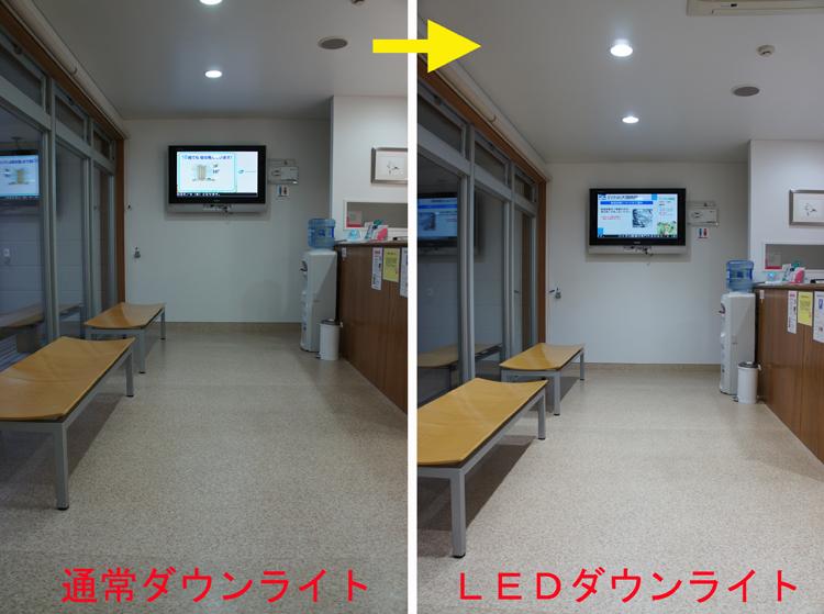 20120517dp.jpg