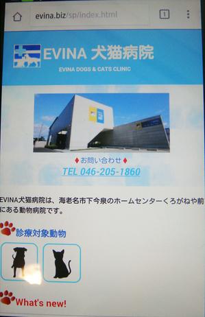 20150411dp.JPG